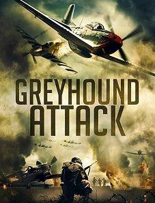Greyhound Attack 2019